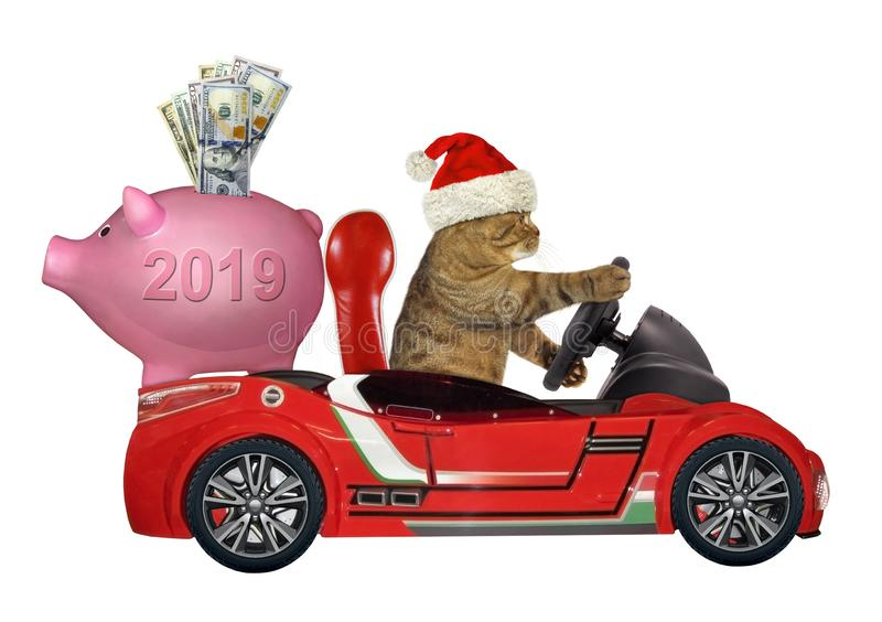 Cat in a red car with a piggy bank stock image