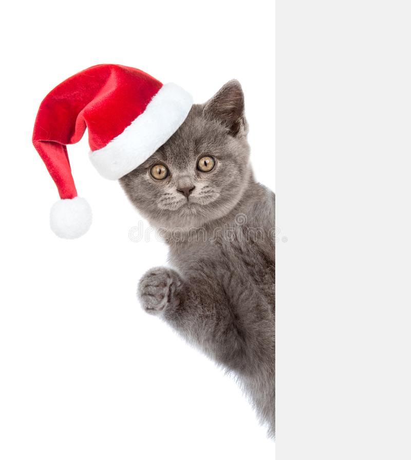 Cat in red christmas hat peeking from behind empty board and looking at camera. isolated on white background.  stock images