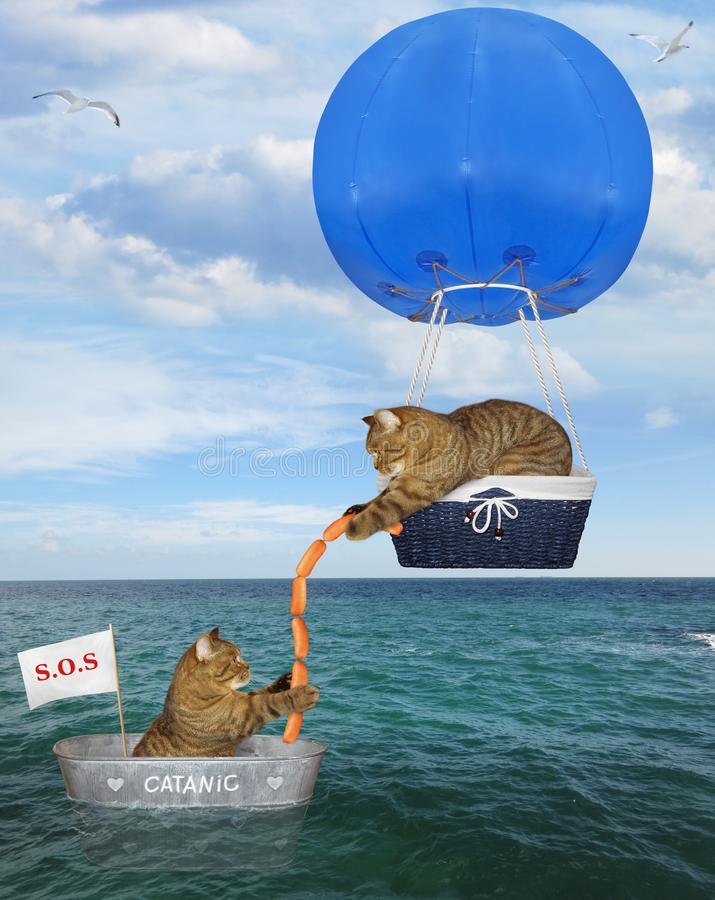 Free Cat Rescuer In A Blue Hot Air Balloon 3 Royalty Free Stock Images - 154611549