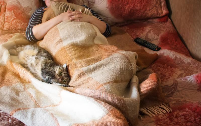 Cat resting next to a woman, midday dream stock photography