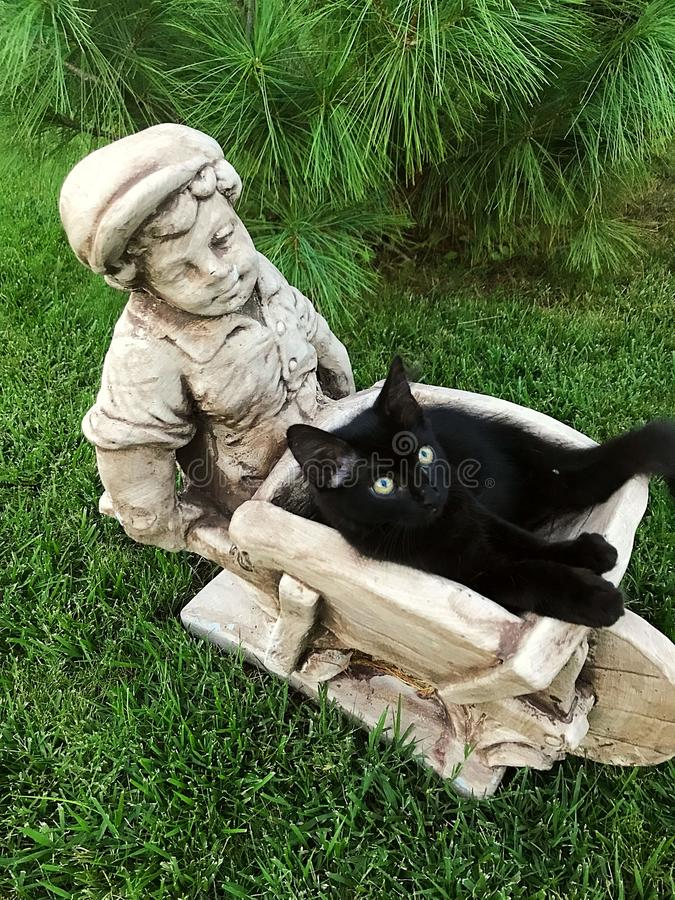 The cat is resting. In the yard on a statue, sweet cat on find a safe resting place. Decorating the yard royalty free stock photos