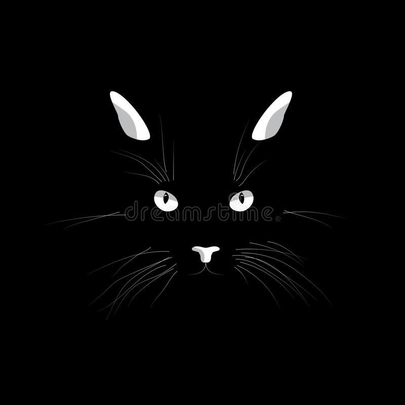 Cat`s face in the dark. Vector cat`s eyes, ears, nose and whiskers isolated on black background. Cat`s face in the dark. Vector cat`s eyes, ears, nose and vector illustration