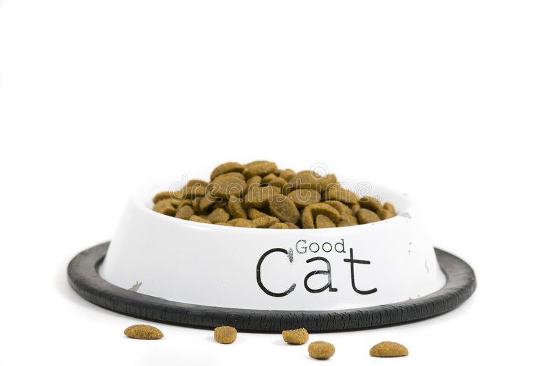 Cat's food. Bowl with cat food. Isolated on white background royalty free stock photo