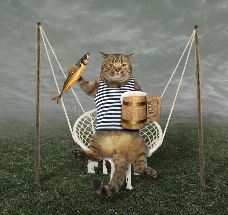 Cat on swing with beer 2. The cat sailor with a glass of beer and a smoked mackerel is swinging on a swing royalty free stock photo