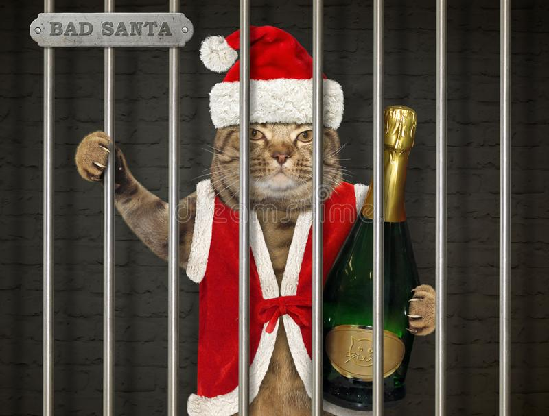 Cat in Santa Claus outfit in prison. The cat in a Santa Claus suit with a bottle of champagne is behind bars in the prison royalty free stock image