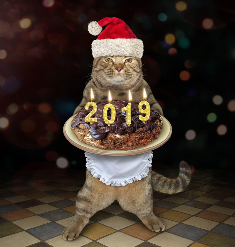 Cat Santa guarda o bolo 2 do Natal foto de stock