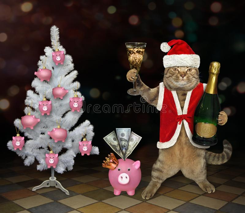 Cat Santa trinkt Champagner stockfotos