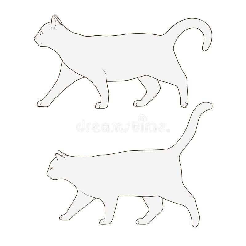 Cat side view scheme silhouette vector. Cat side view scheme silhouette medical veterinary vector illustration vector illustration