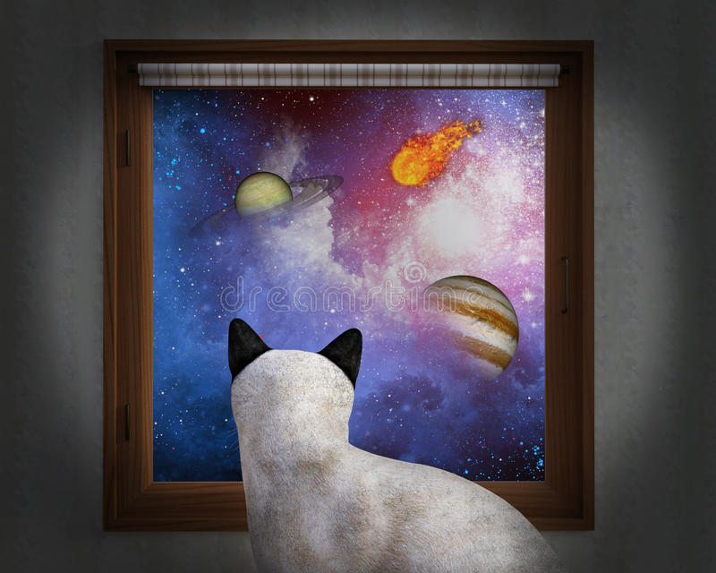 Cat Sit Window, Stars, Planets. A curious house cat sits and looks out the window and sees the universe, galaxy, and stars. Planets and a fireball add to the see