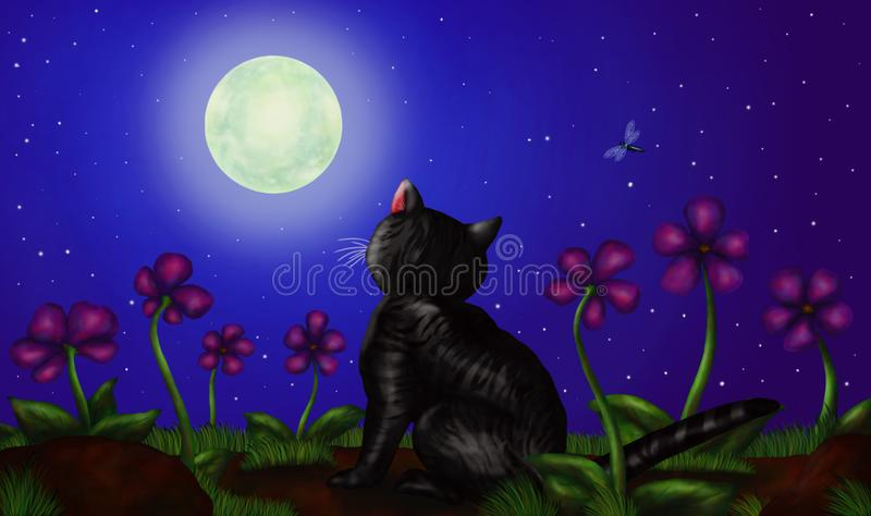 Cat sitting and watching full moon at night 2019 stock images
