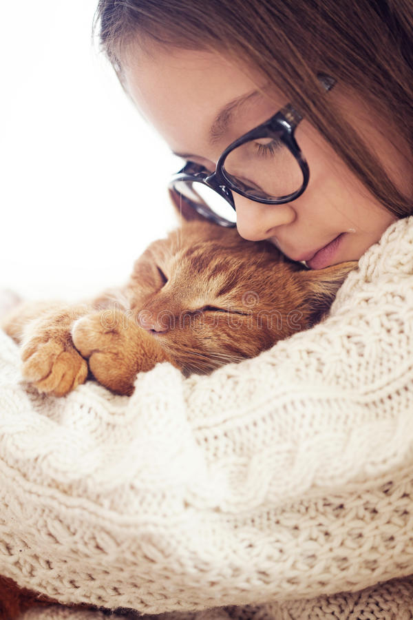 Cat Sleeping fotos de archivo