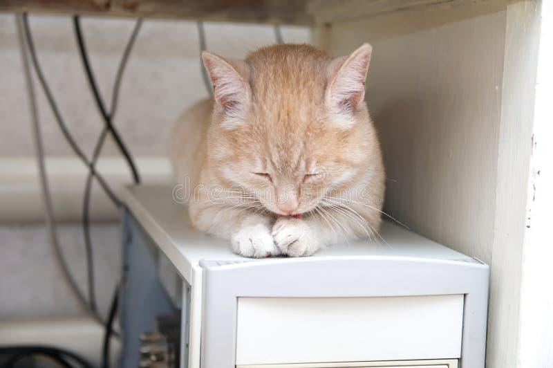Cat sleeping on computer under table warming himself. Ginger cat sleeping on computer under table warming himself stock photos
