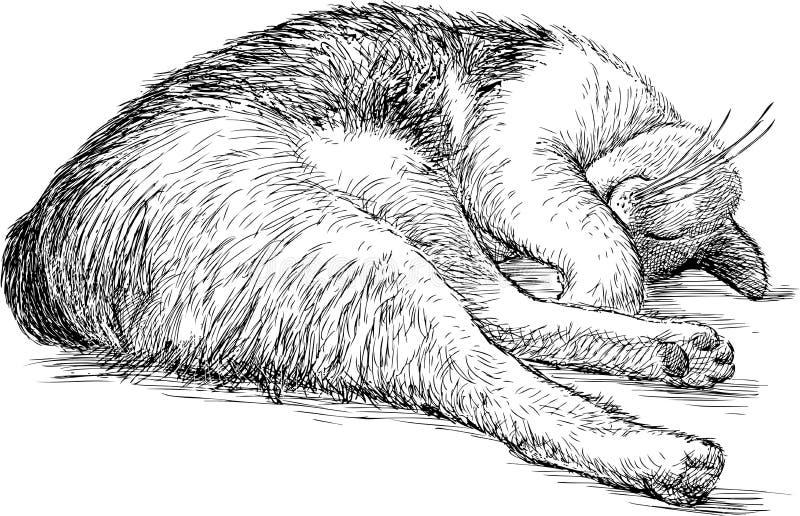Cat Sleeping nacional ilustración del vector