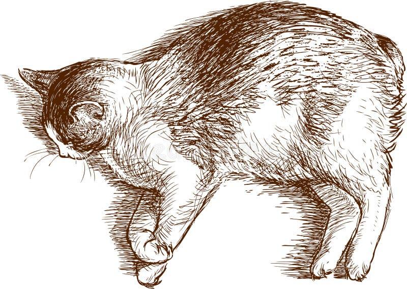 Cat Sleeps libre illustration