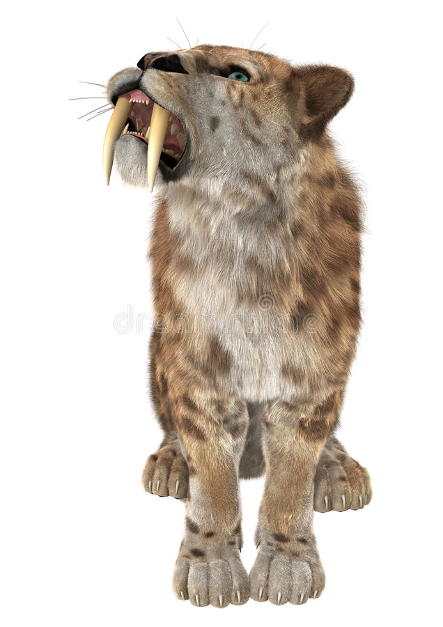 Cat Smilodon grande foto de stock royalty free