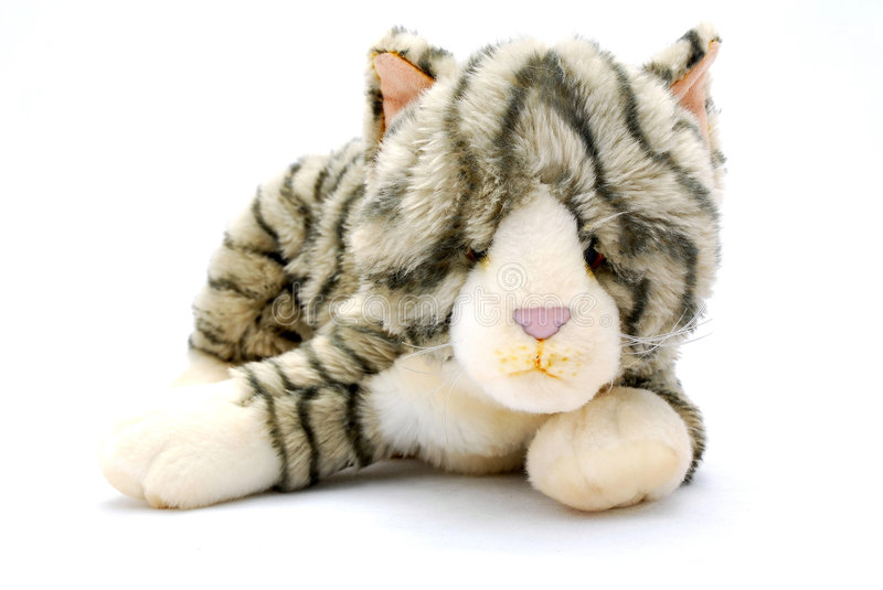 Cat Soft Toy Royalty Free Stock Photos