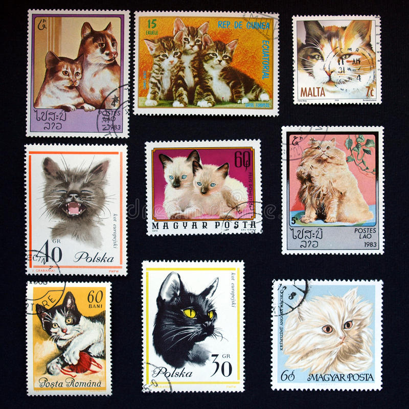 Download Cat stamps stock image. Image of stamp, poland, meter - 10513083