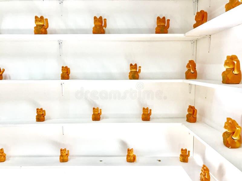 Cat Stone-Muster auf Raum stockfotografie