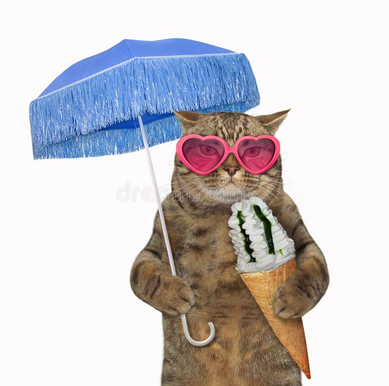 Cat eats ice cream under an umbrella 2 stock images