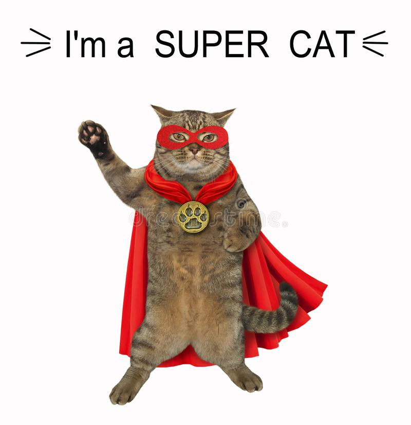 Cat is a super hero 2. The super cat is wearing a red cloak, a mask and a golden locket. White background vector illustration