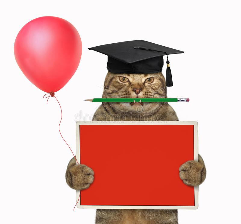 Cat teacher with pencil and red board 2. The cat teacher in a square academic hat with a pencil in his mouth is holding the small school red blank board and a stock images