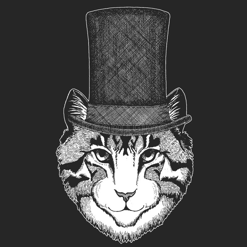 Cat Top hatt, cylinder Hipsterdjur, gentleman Klassisk huvudbonad Tryck för barn t-skjorta, bekläda för ungar vektor illustrationer