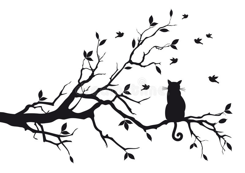 Cat on a tree branch. Cat sitting on a tree branch and watching birds, background