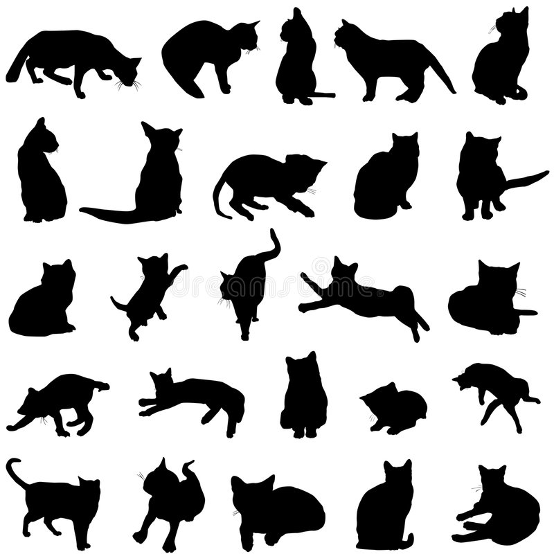 Download Cat vector stock vector. Image of relax, silhouette, animal - 4800352