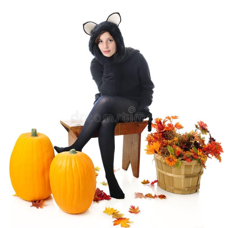 Cat Waiting adolescente bonita fotos de stock
