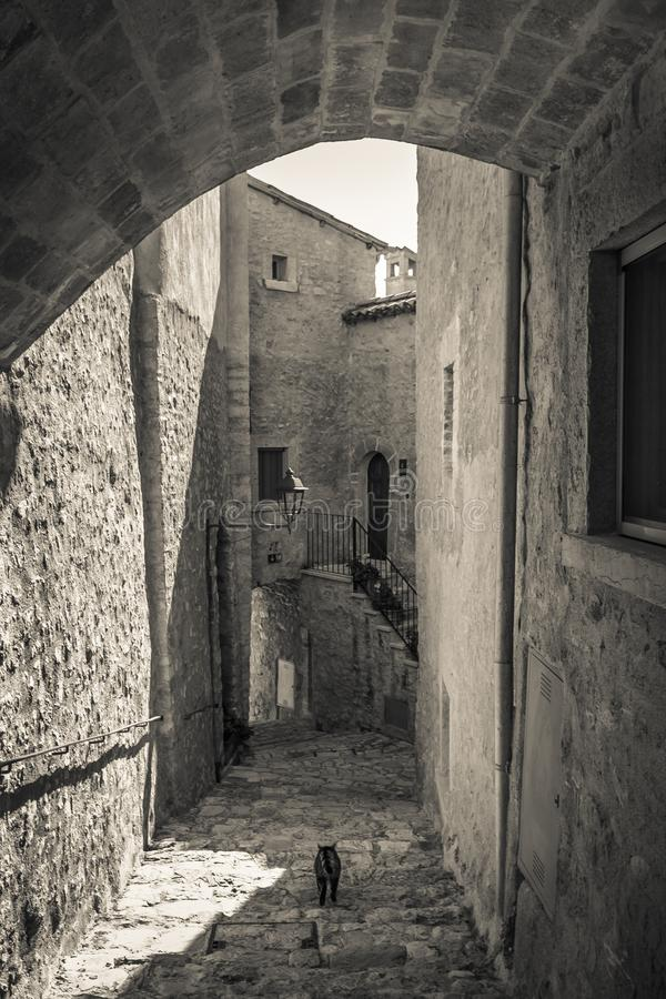 Cat walking in the alley of Postignano medieval village in Umbria royalty free stock photo
