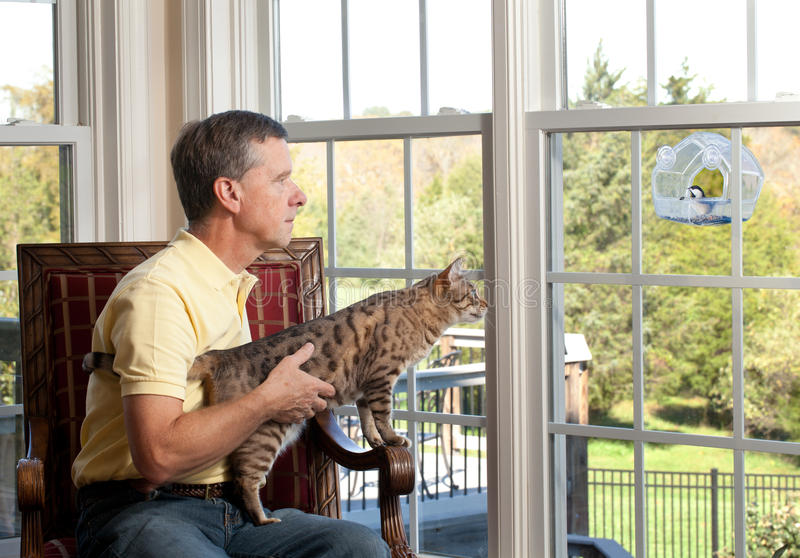 Cat watching bird on feeder. Senior man with bengal cat watching chickadee bird on birdfeeder from chair stock image