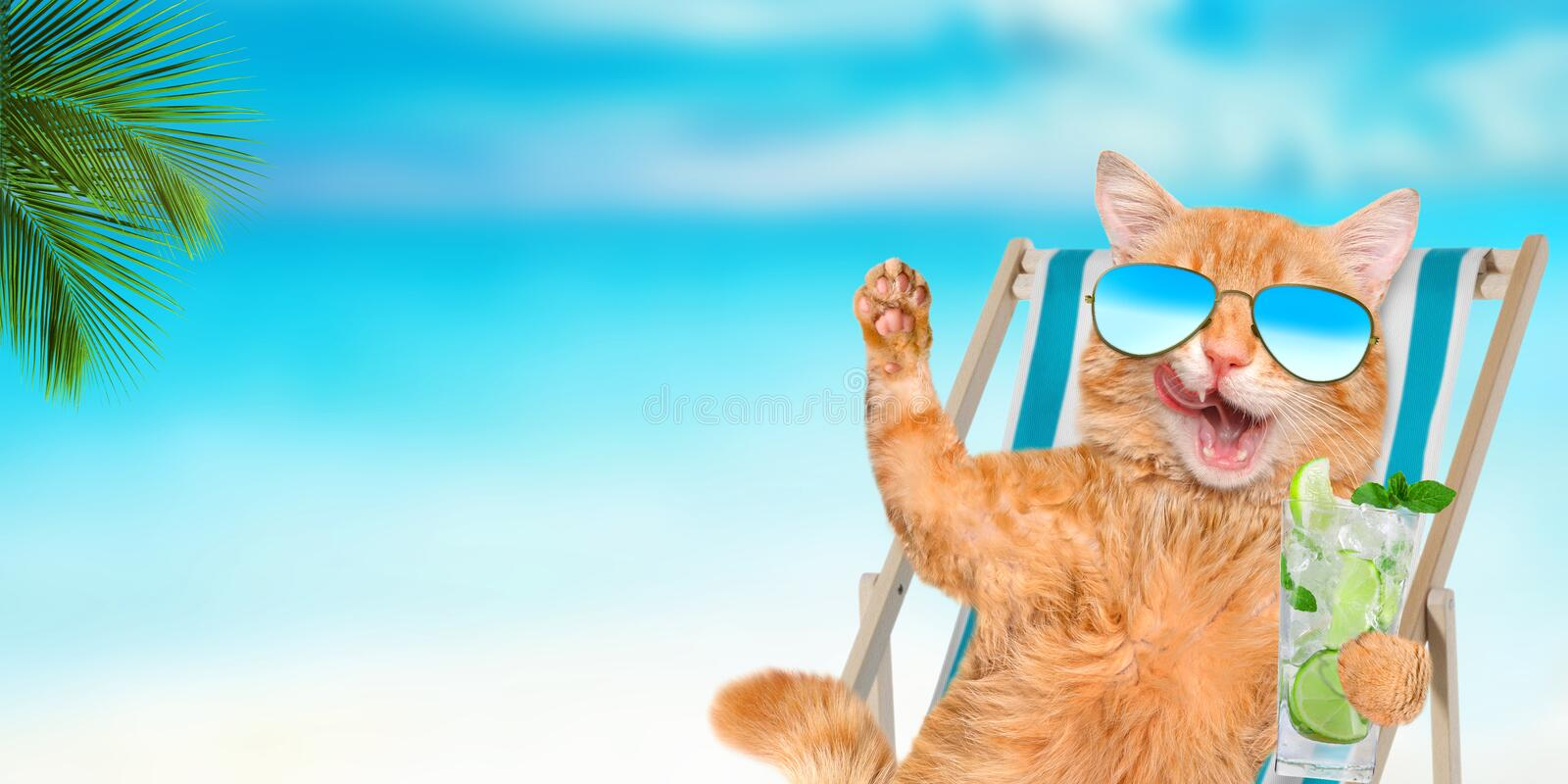 Cat wearing sunglasses relaxing sitting on deckchair. Cat wearing sunglasses relaxing sitting on deckchair in the sea background stock image