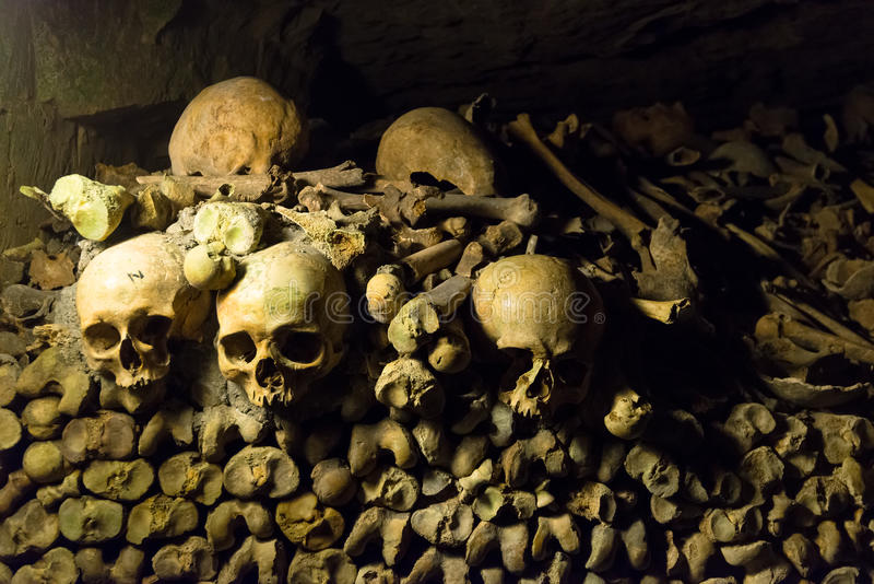 Download The Catacombs of Paris stock photo. Image of bone, death - 38904388