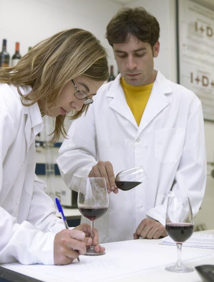 Catadores del vino foto de archivo libre de regalías