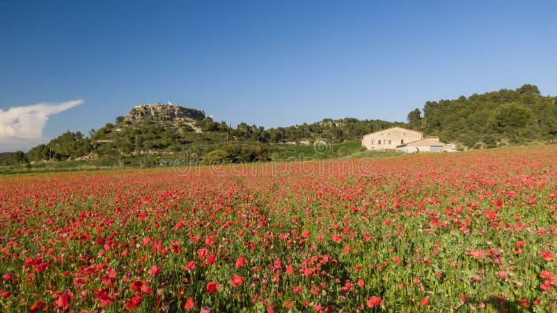 Catalaans landbouwbedrijf met kasteel op de heuvel royalty-vrije stock afbeelding
