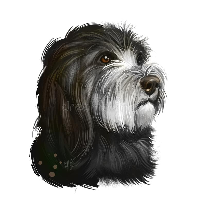 Catalan Sheepdog dog breed isolated on white background digital art illustration. Breed of Catalan Pyrenean dog used as sheepdog. Cute pet hand drawn portrait royalty free illustration