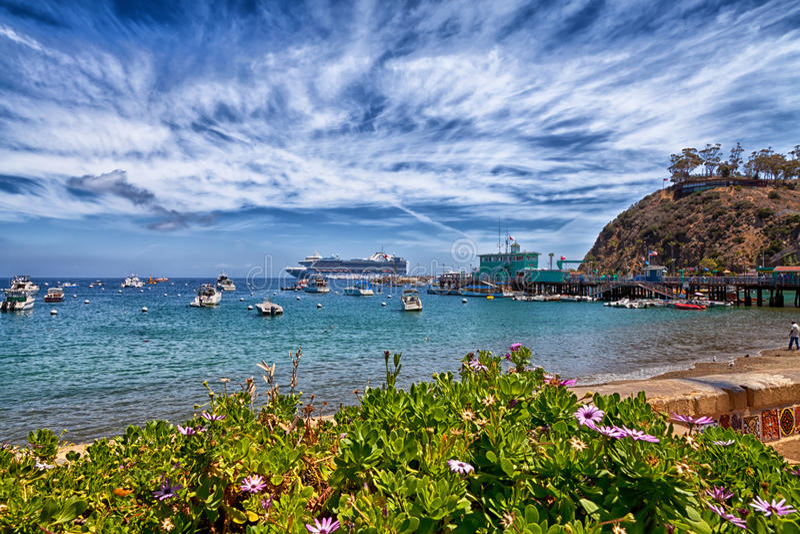 Catalina Island Harbour immagini stock