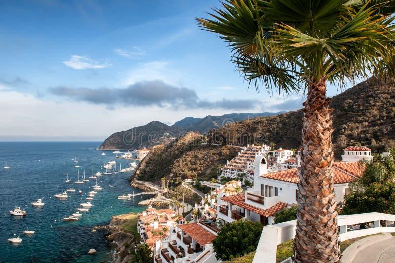 Catalina Island Resort e Avalon Bay immagini stock libere da diritti