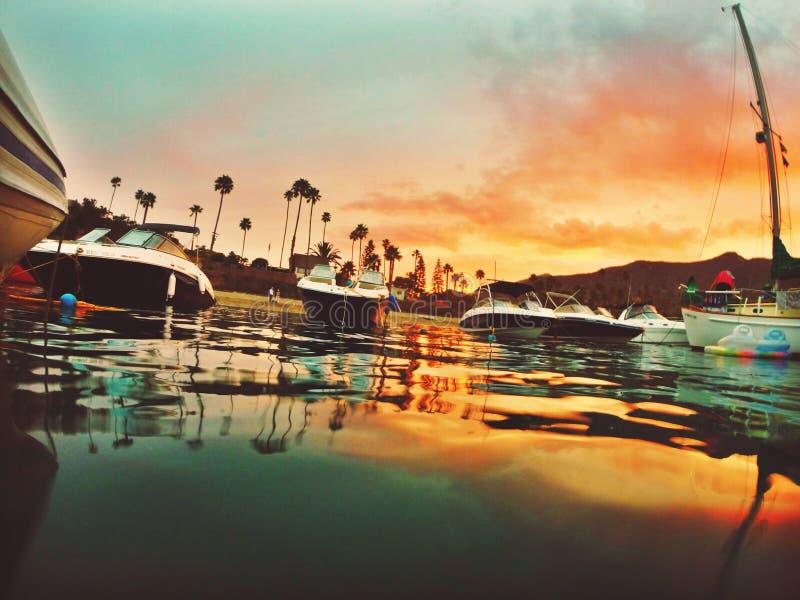 Catalina stock photography