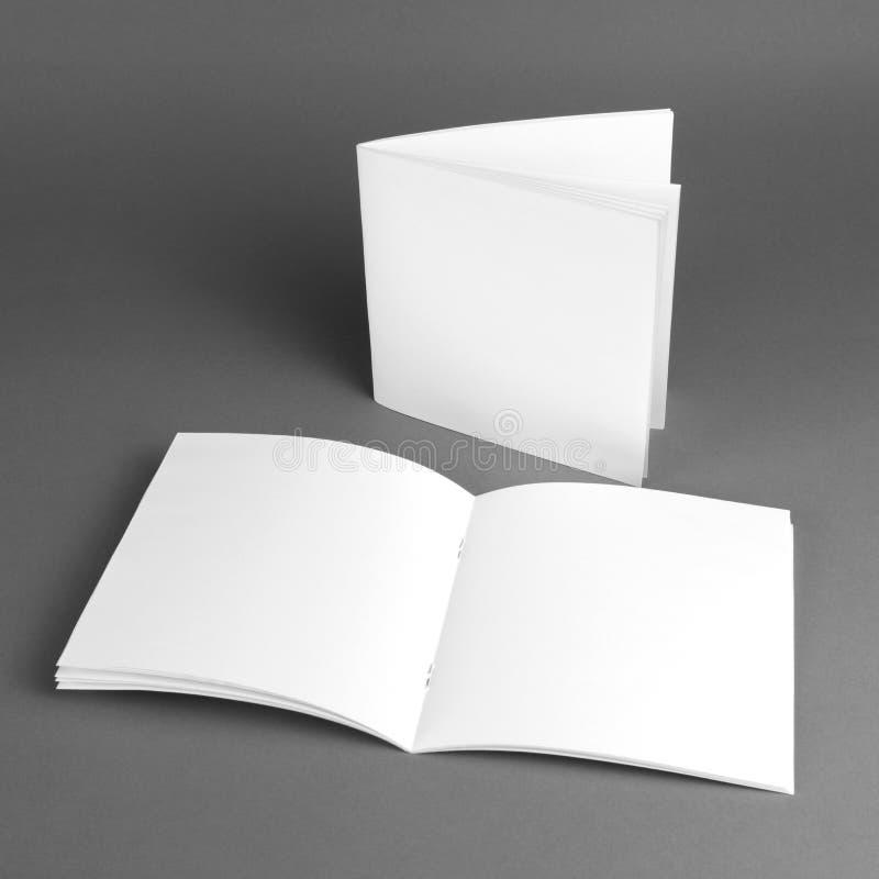 Catalogue vide, brochure, magazines, moquerie de livre  photo stock