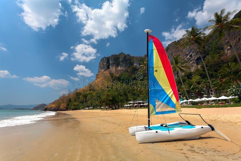 Catamarã da navigação na praia com palmeiras imagens de stock