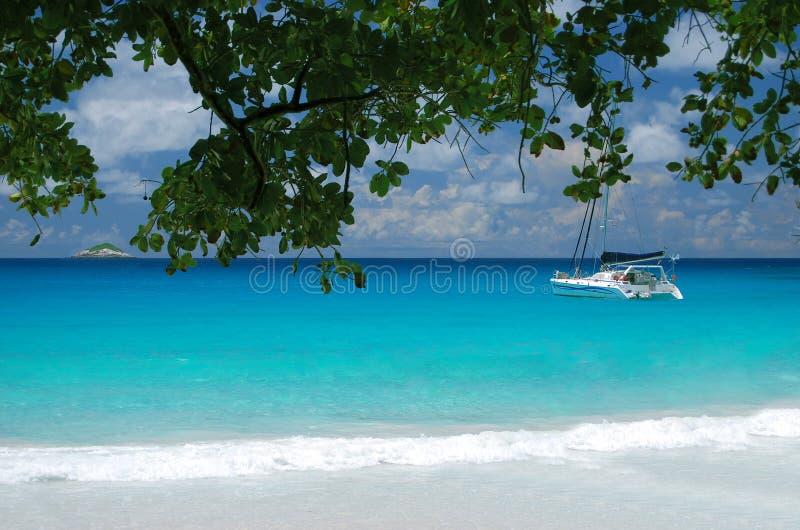 Catamarã luxuoso que navega perto de uma praia tropical foto de stock royalty free