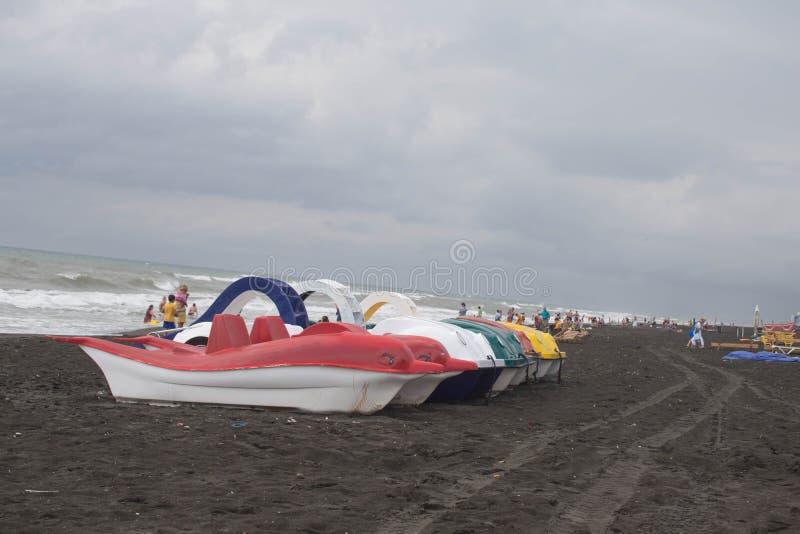 Catamarãs do pedal da foto de flores diferentes no mar do banco imagem de stock royalty free