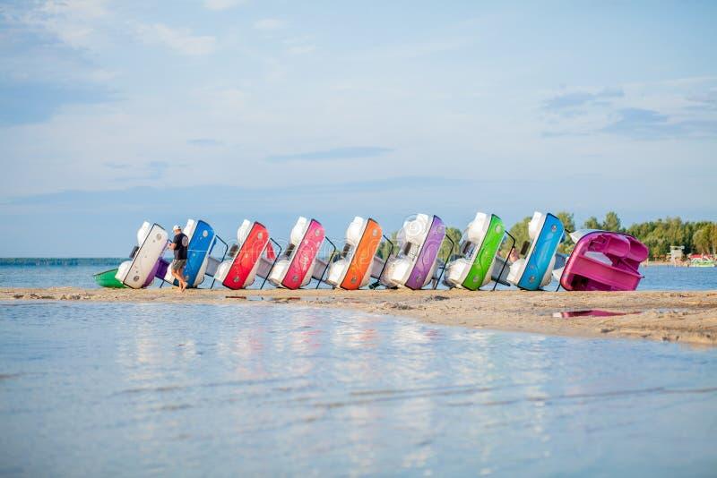 Catamarãs empilhados no lago Barcos coloridos brilhantes do pedal na praia do lago fotos de stock royalty free