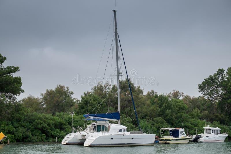 Catamaran łódź na Rhone rzece przy Camargue parkiem, Francja zdjęcia stock