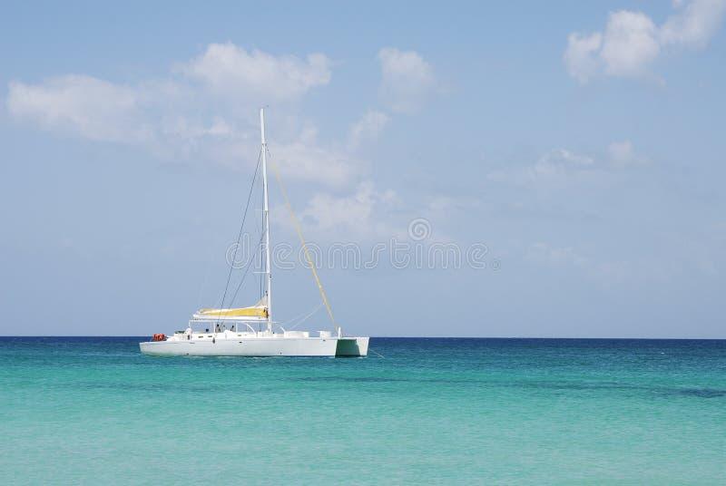 Catamaran image stock