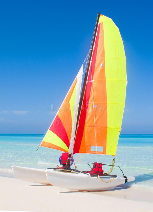 Catamaran stock afbeeldingen