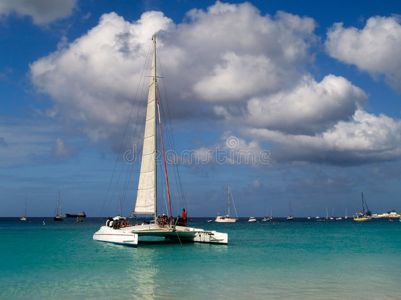 Catamaran photos libres de droits