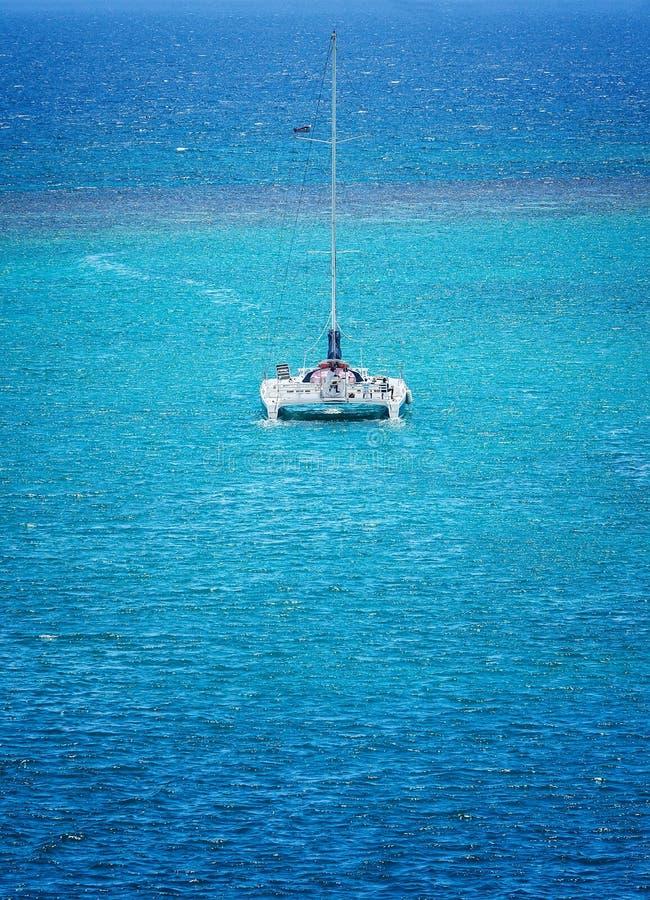catamaran fotografia stock libera da diritti
