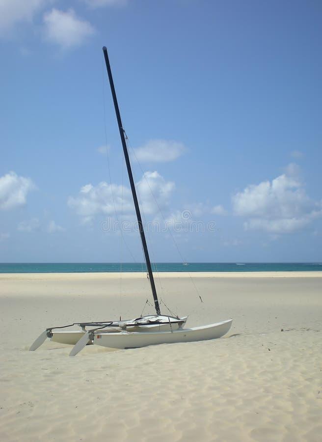 Download Catamaran on the beach stock image. Image of ship, tropics - 4105409